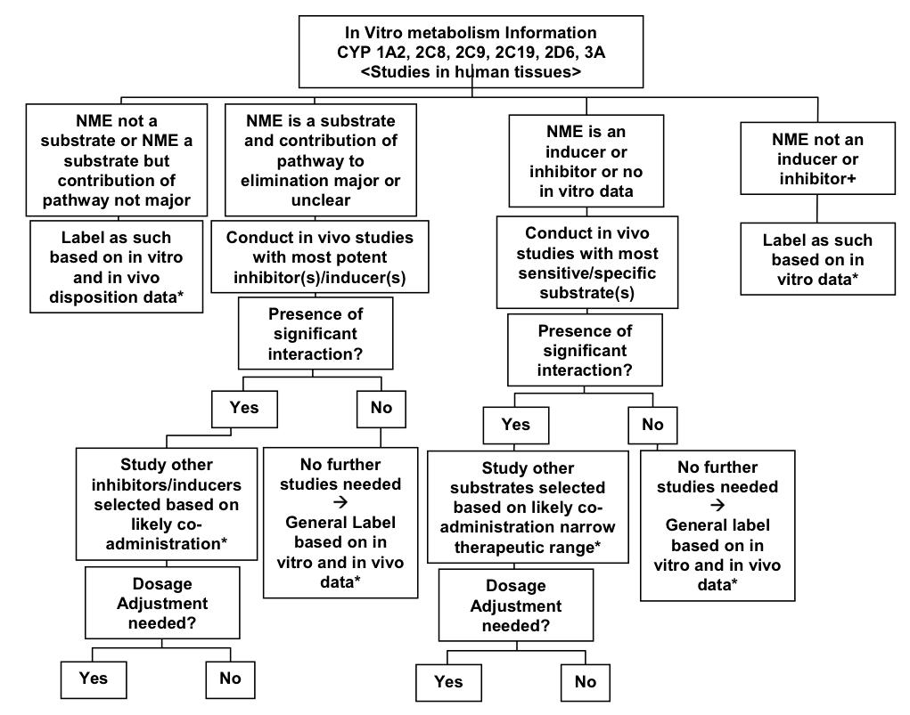 Drug-drug interaction decision tree