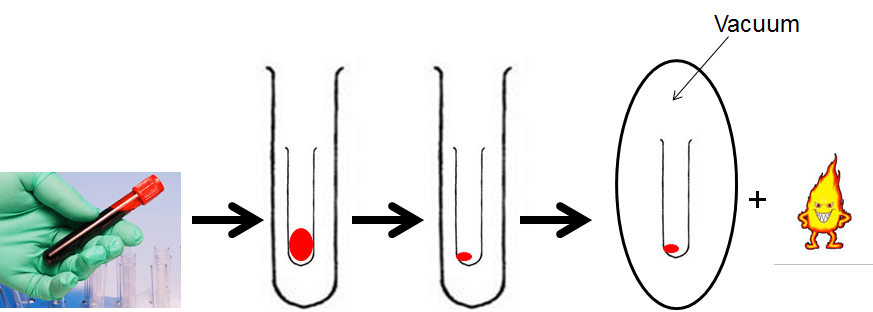 Process to convert biological sample to combustion step of AMS sample preparation