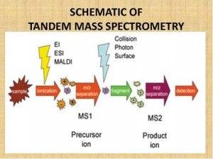 Tandem Mass Spectrometry