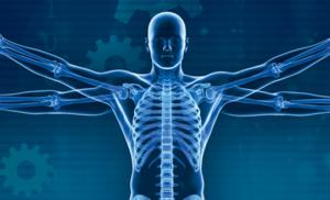 Biosimulation and Informatics Software